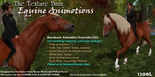 Bareback Riding AO for WHRH Warmblood & Quarter Horse riding horses - Water Horse - Texture Barn - Equine Animotions
