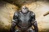 Fantasy ogre warrior 002