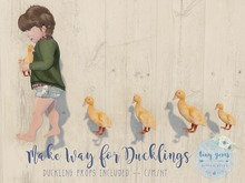{tg.} - Make Way for Ducklings. (boxed)