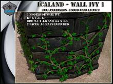Icaland - Wall Ivy 1