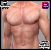 UNISEX Gladiator or Gladiatrix Scars chest