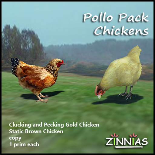 Zinnias Pollo Pack Gold and Brown Chickens