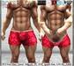adn  boxer love %28belleza signature adam slink aesthetic tmp%29mp