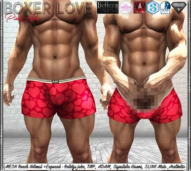 [AdN] Boxer Love (Belleza signature adam slink aesthetic tmp)