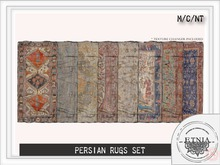 [ETNIA] ** WEAR** Persian Rugs
