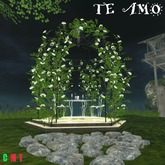 Ti Amo Proposal Gazebo