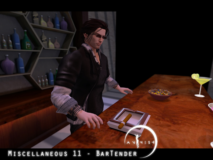 Ani-mesh: Miscellaneous 11 - BarTender - For Builders