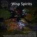 [DDD] Wisp Spirits - Wandering Animated Twinkling Will-O-Wisp