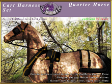 *E* Cart Harness Set [BOXED] RH Quarter Horse