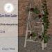 .::Hazeel::. Love Roses Ladder