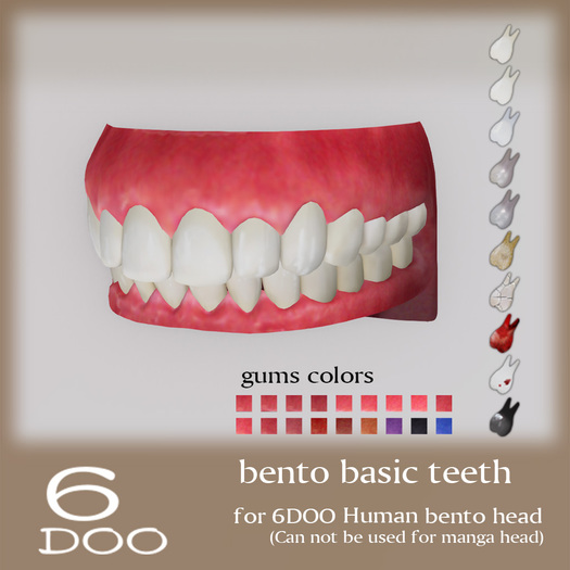 *6DOO* bento basic teeth