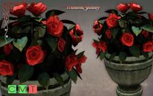 [MF] Mesh romantic garden roses flowers pot (boxed)