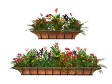MSD - Tropical Window Flower Boxes - Set of Two - Della