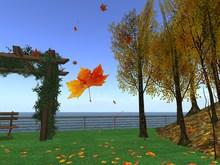 Falling Autumn Leaves / Leaf Emitter V1