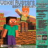 ~JJ~ Voxel Avatars