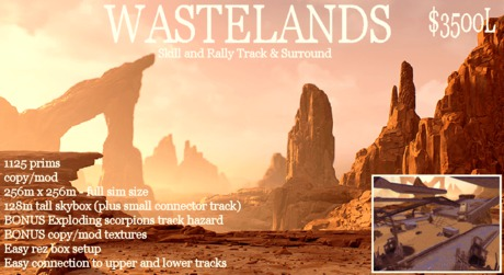 Wasteland Skill and Rally Track