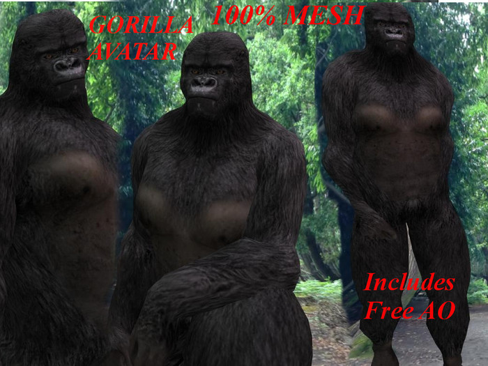 [BOOGIE] Gorilla Avatar- 100% Mesh Gorilla Avatar, Includes Shape, Alpha Layer & Free AO