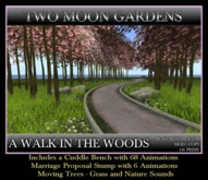 A Walk in the Woods - Valentine landscape Garden with Cherry Blossoms and marriage proposal. Small Forest
