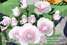 [ Organica ] Fresh Cut Roses (Light Pink)