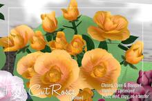 [ Organica ] Fresh Cut Roses (Yellow)