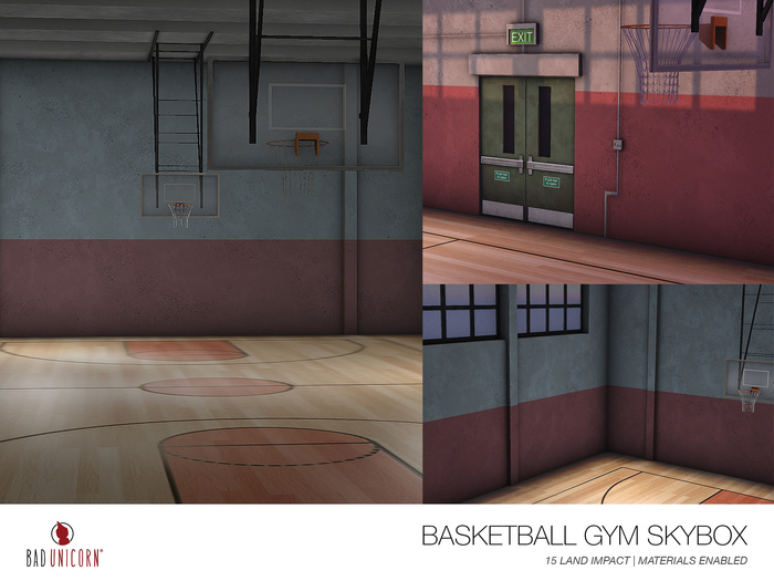 Basketball Gym Skybox
