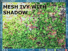 Mesh Ivy