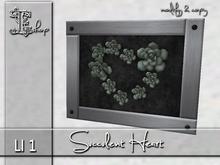 Succulent Heart MC