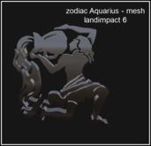 # zodiac Aquarius mesh box