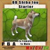 BB Shiba Inu Pair Starter
