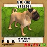 BB Pug Pair Starter