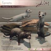 JIAN :: Ferret Companion & Wanderer