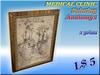 MEDICAL CLINIC Painting Anatomy 1 (1 prim)