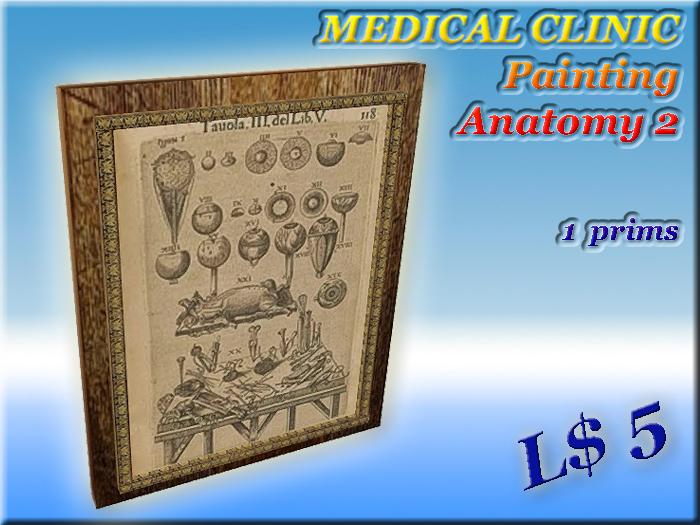MEDICAL CLINIC Painting Anatomy 2 (1 prim)