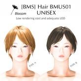 [BMS] Hair BMUS01 UNISEX ColorType 2 // BOX