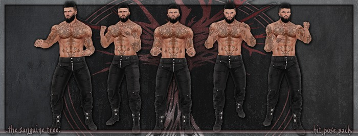 [ t.s.t ] Hit Pose Pack [ WEAR & CLICK ]
