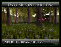 TMG - UNDER THE BRANCHES - V2*