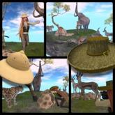 Journey to the Safari by Rah Rehula