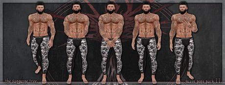[ t.s.t ] Suave Pose Pack II [ WEAR & CLICK ]