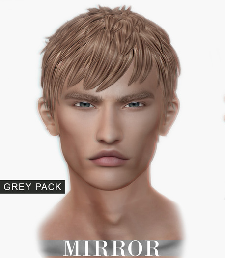 MIRROR - Justin Hair -Grey Pack-