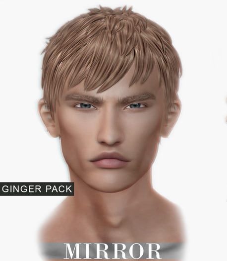 MIRROR - Justin Hair -Ginger Pack-