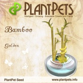 PlantPet Seed [Bamboo *Golden*]RE