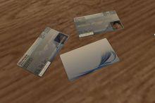 .PSG. ID Card Full Perm