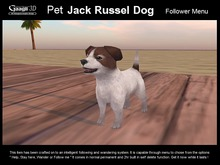 Gaagii - Pet Jack Russell Dog --- Following Pet System