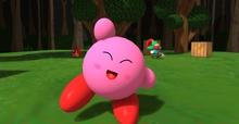 [D.H.C] PinkPoyo