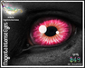 Teegle/Teeglepet - Eye Appliers - Intense Magenta