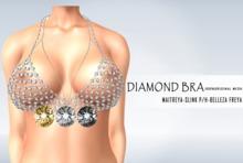 iS Diamond Chain Bra SILVER