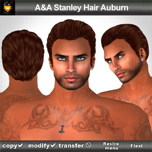 A&A Stanley Hair Auburn