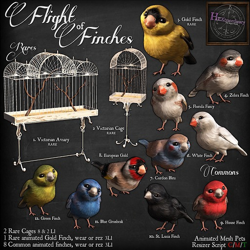 Second Life Marketplace Hextraordinary Flight Of Finch Florida Fancy Finch