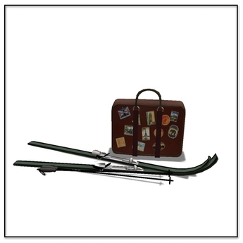 Apres Ski Lugage and Ski Deco- Belle Belle Furniture