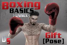 Boxing Basics Pose Gift [Dominion Studios]